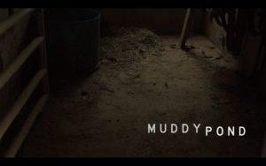 muddypond1